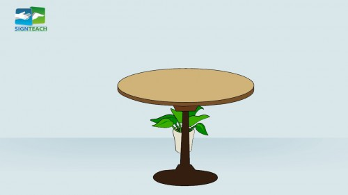 Table - plant - behind