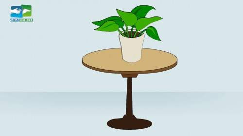 Table - plant - on